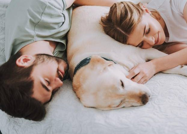 7 cuddly positions and their meaning